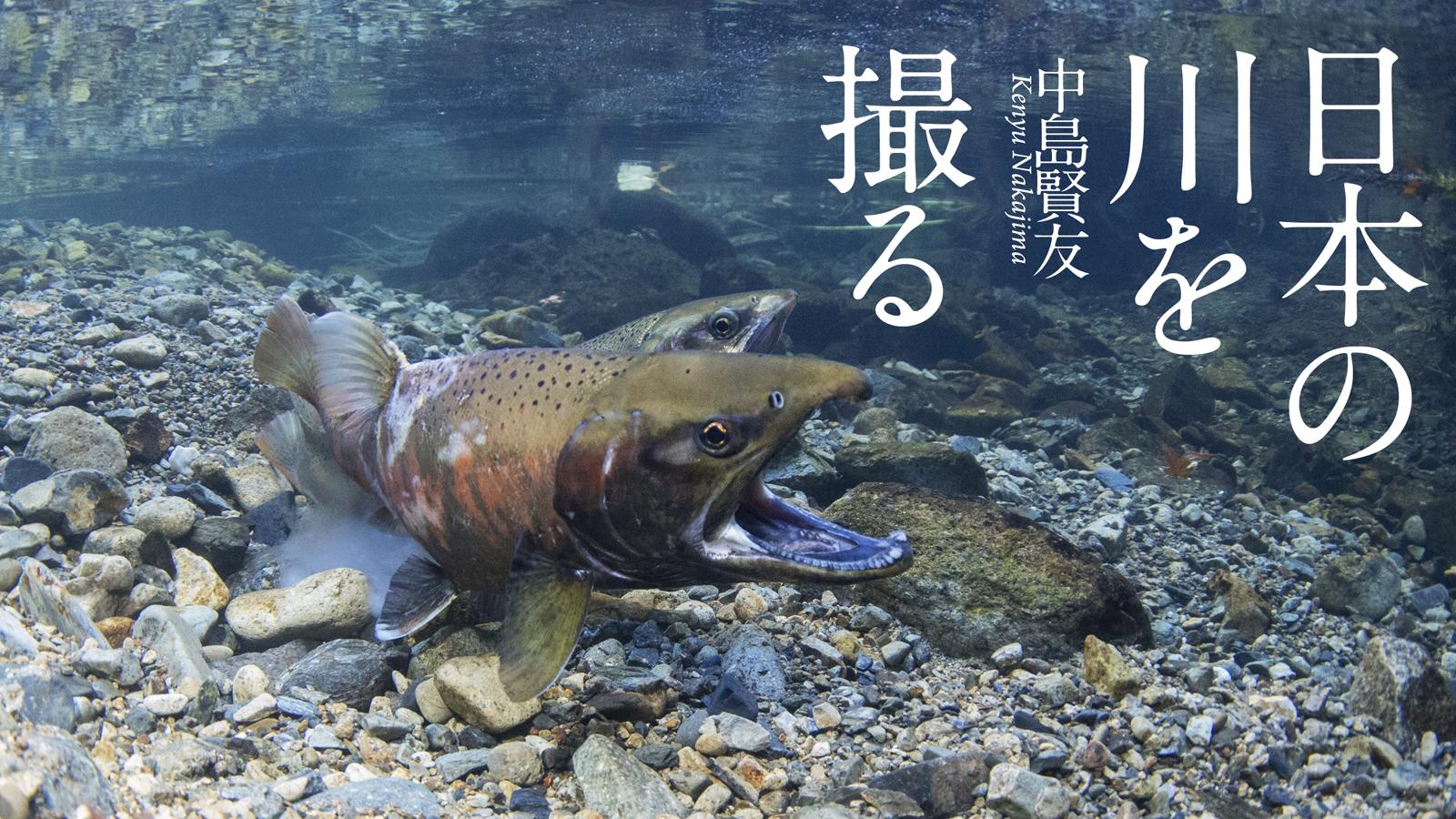 日本の川を撮る