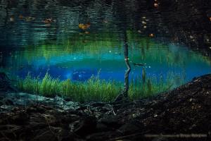 湧水河川の紅葉